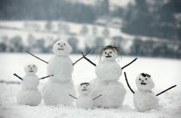Snow-January-2013