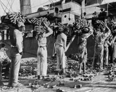 Loading bananas - Jamaica