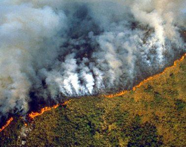 πυρκαγιές στο δάσος του Αμαζονίου